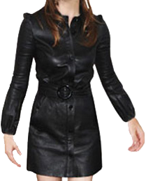 Leather_Dresses__4e2969b05e6b1
