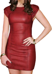Leather_Dresses__4e296b22090a5