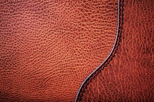 the_texture_leather